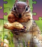 Real Jigsaw Puzzle