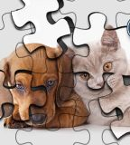 Cats Vs Dogs Puzzle